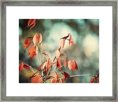 November Day Framed Print