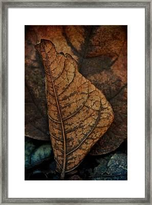 November In Leather Framed Print by Odd Jeppesen