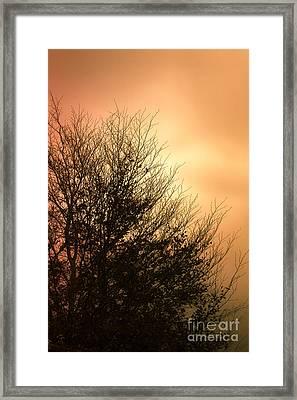 November Memories Framed Print by Jan Bickerton