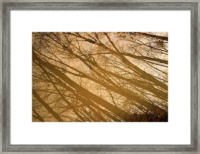 November Reflection In Lima Framed Print by Dan Sproul