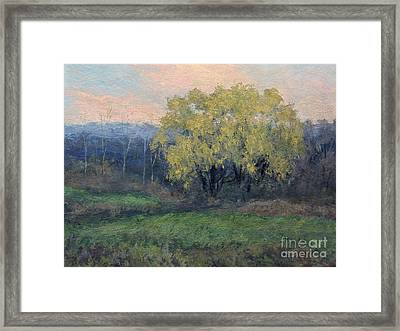 November Willow Framed Print by Gregory Arnett