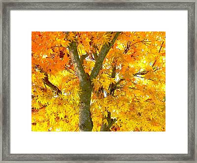 Novemberness Framed Print