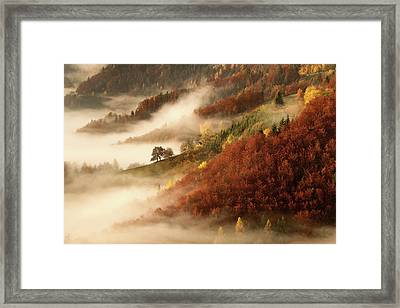 November's Fog Framed Print