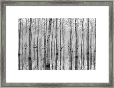Novembre 2014 Framed Print by Aglioni Simone