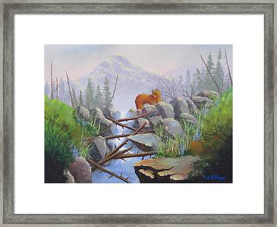Noway Down Framed Print