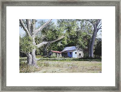 Nude Landscape Chiefland Florida Framed Print by Richard Barone