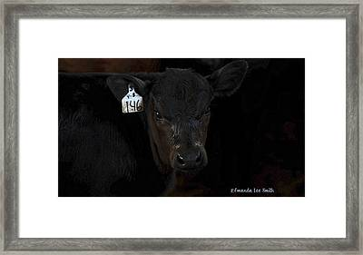 Number 146 Framed Print