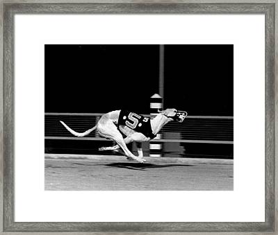 Number 5 Flys Down The Stretch Framed Print by Retro Images Archive
