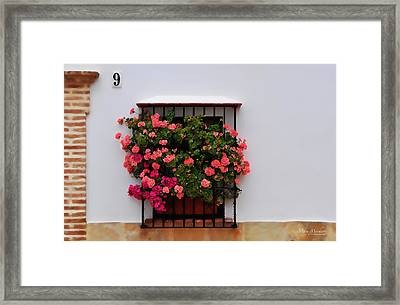 Number 9 - Geraniums In The Window Framed Print by Mary Machare