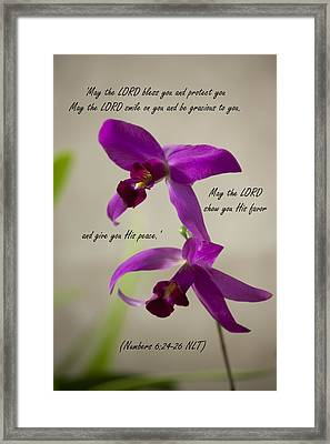 Numbers 6  Framed Print by Inspirational  Designs