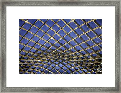 Nurb Structure Framed Print by Lynn Palmer