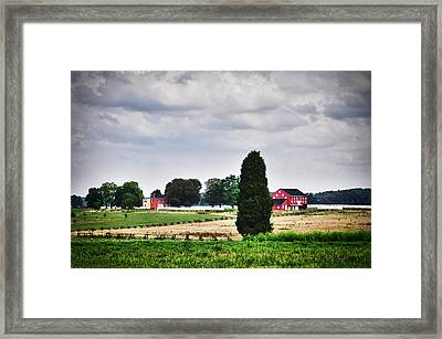 Nurturing The Land 2 Framed Print by Rhonda Negard