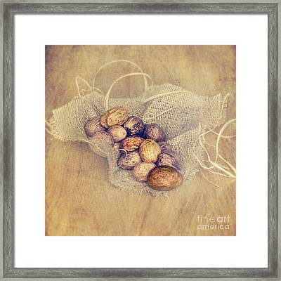 Nutritious Nuts Framed Print by Svetlana Sewell