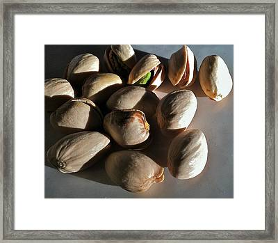 Framed Print featuring the photograph Nuts by Bill Owen
