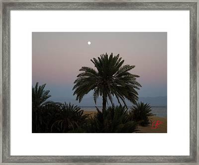 Nuweiba Beach Sinai Egypt Framed Print