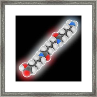 Nylon 6 Polymer Framed Print