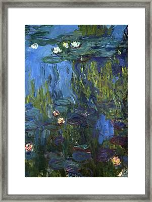 Nympheas Framed Print by Calude Monet