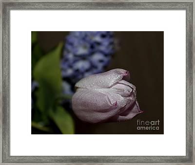 Cool Framed Print by Katy Mei