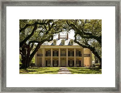 Oak Alley  Framed Print