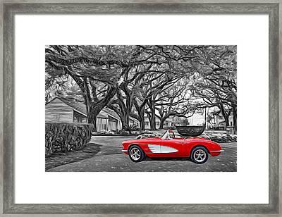 Oak Alley Evening - Paint 2 Framed Print