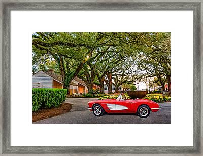 Oak Alley Evening - Paint Framed Print