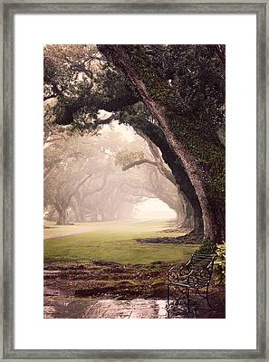 Oak Alley Framed Print by Maria Robinson