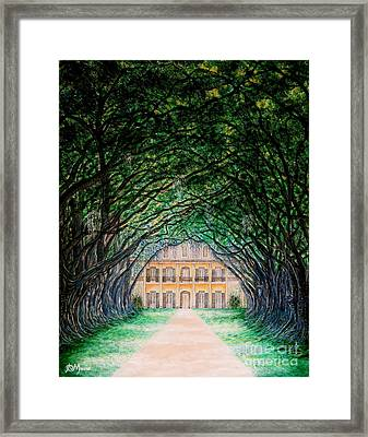 Oak Alley Plantation Framed Print by Aimee Mouw