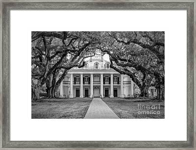 Oak Alley Plantation Charcoal Framed Print by Kathleen K Parker