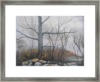 Oak And Granite  Framed Print