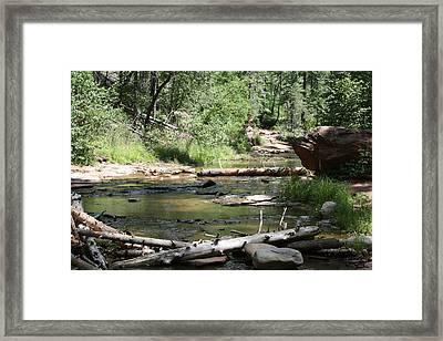 Oak Creek Canyon 5 Framed Print by Grant Washburn