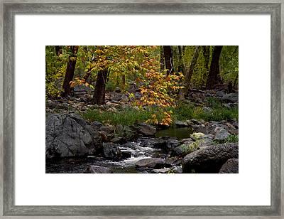 Oak Creek Canyon H Framed Print
