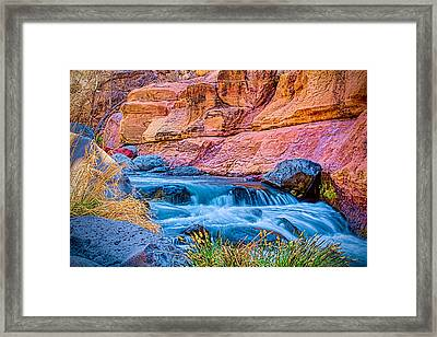 Oak Creek In The Spring Framed Print by Fred Larson