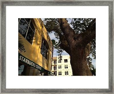 Oak Guarding Howard And Moody Framed Print