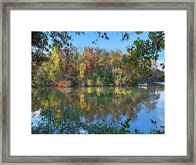Oak-hickory Forest At Lake Framed Print