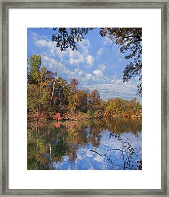 Oak-hickory Forest In Autumn Foliage Framed Print