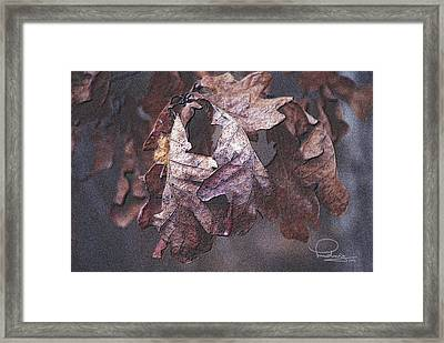Framed Print featuring the photograph Oak Leaves by Ludwig Keck