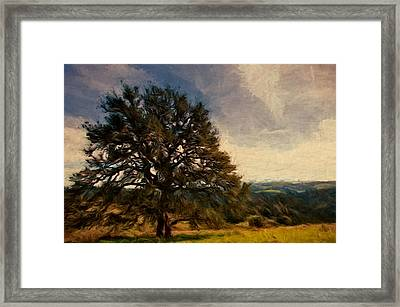 Oak Lookout Framed Print by John K Woodruff