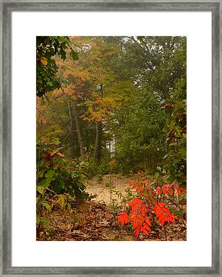 Oak Openings  Framed Print