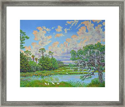 Oak Tree At Botany Bay Plantation Framed Print