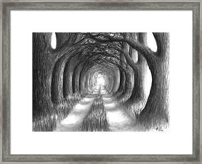 Oak Tree Lane Framed Print