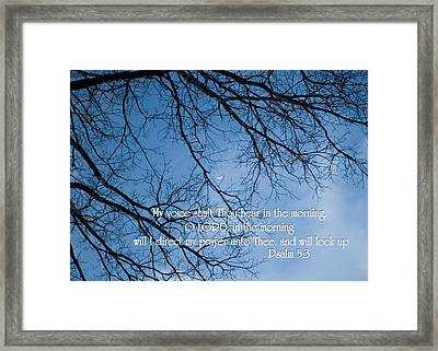 Framed Print featuring the photograph Oak Tree Psalm by Denise Beverly