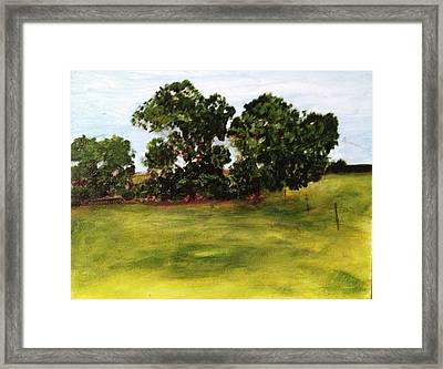 Oak Trees Framed Print by Andrea Friedell
