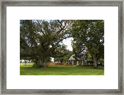 Oak Trees Around Country House Framed Print