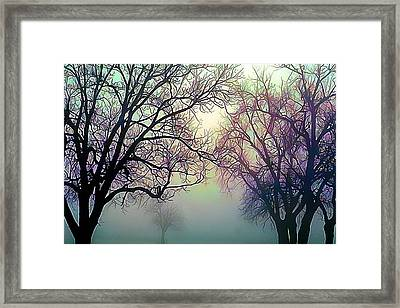 Oak Trees In The Mourning Myst Framed Print by Wernher Krutein