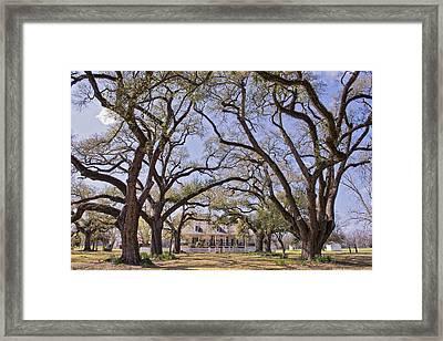 Oakland Plantation Framed Print