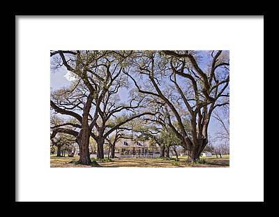 Natchitoches Framed Prints
