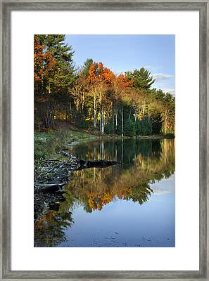 Framed Print featuring the photograph Oakley Corners State Forest by Christina Rollo