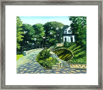 Oakridge In Forest Park Framed Print