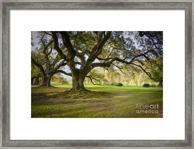 Oaks At Oak Alley Plantation - Painting Framed Print by Kathleen K Parker