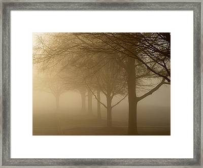 Framed Print featuring the photograph Oaks In The Fog by Greg Simmons
